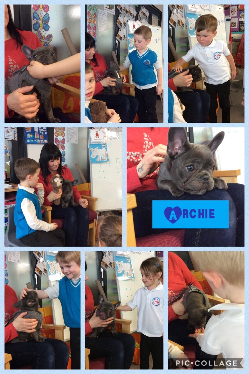 Reception had a visit from Archie the puppy!