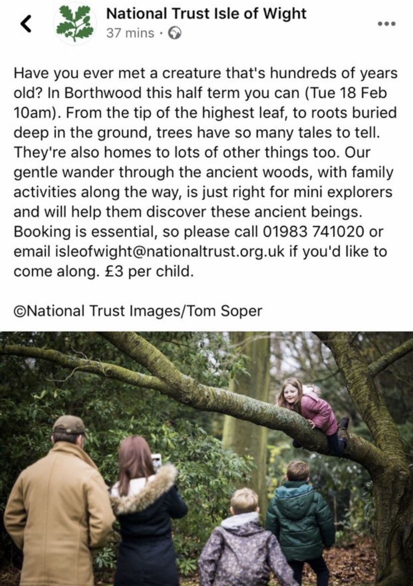National Trust - Borthwood Copse this half term